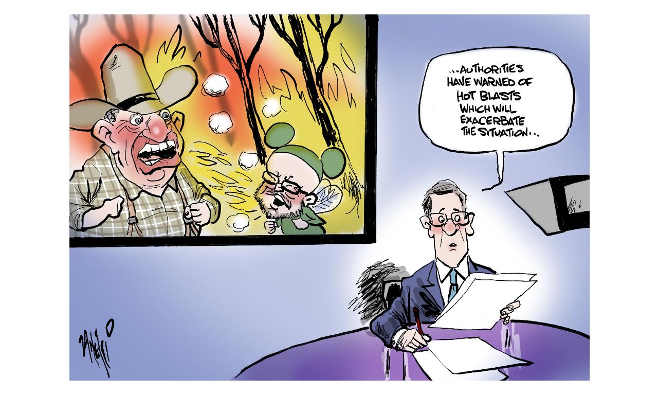 Cartoon 13/11/19
