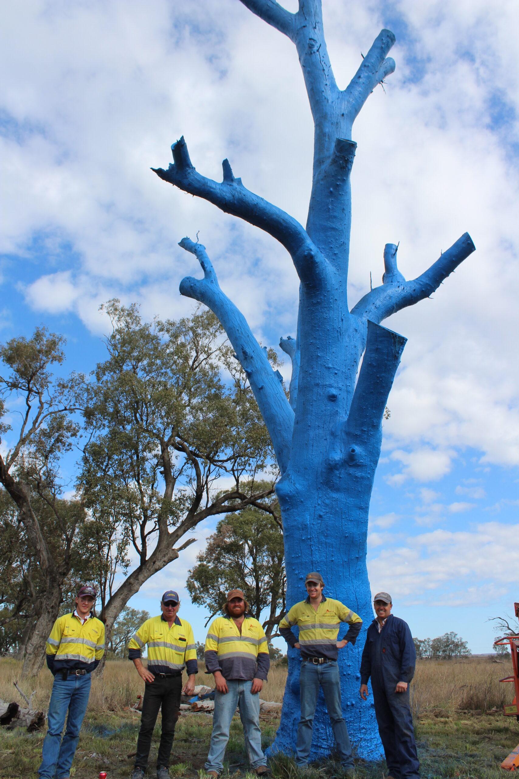 Have you seen Boggabri's blue tree?   PHOTOS